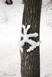 在一个树干的雪形象在Tsaritsyno公园在莫斯科 库存图片