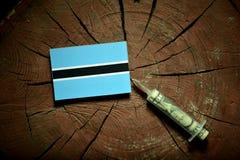 在一个树桩的博茨瓦纳旗子与注射金钱的注射器 库存照片