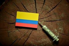 在一个树桩的哥伦比亚的旗子与注射金钱的注射器 库存图片