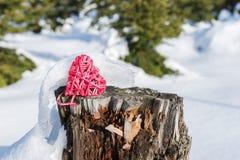 在一个树桩的红色心脏在冬天森林里 图库摄影