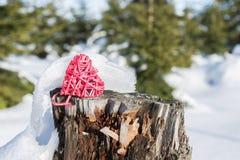 在一个树桩的红色心脏在冬天森林里 免版税库存图片