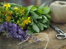 在一个树桩的芳香草本与剪刀和螺纹丝球  免版税库存照片