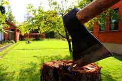在一个树桩的轴在庭院里 免版税库存照片