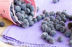 在一个桃红色桶的蓝莓 免版税库存照片