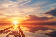 在一个桃红色盐湖,桃红色盐的提取的一个前矿的日落 木钉行长满与盐 免版税库存照片