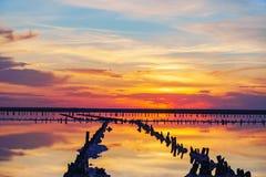 在一个桃红色盐湖,桃红色盐的提取的一个前矿的日落 木钉行长满与盐 库存图片