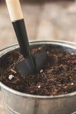 在一个桶的一把铁锹有土壤土壤的,特写镜头 庭院的概念 免版税库存图片