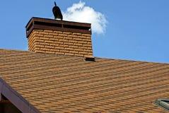 在一个棕色屋顶的砖烟囱有在天空背景的瓦片的 库存照片