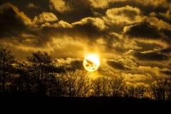 在一个森林上的丹麦日落有剧烈的天空的 免版税库存照片