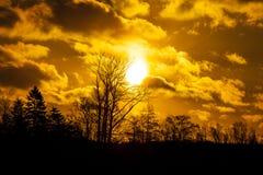 在一个森林上的丹麦日落有剧烈的天空的 库存图片