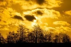 在一个森林上的丹麦日落有剧烈的天空的 免版税图库摄影