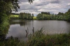 在一个森林中间的一个小池塘在草甸和暴风云附近 库存图片