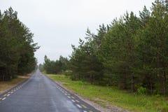 在一个森林中间的长,不尽的路在一阴沉的天 库存照片