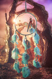 在一个森林的Dreamcatcher日落的 免版税图库摄影
