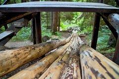 在一个森林露天博物馆灌溉水道在Vydrovo 库存照片