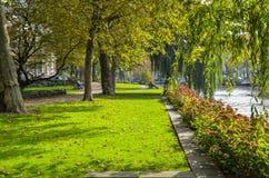 在一个正方形的秋天在阿姆斯特丹 库存照片