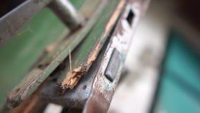 在一个残破的木门的切尔诺贝利瘤在一个棚子在慢动作的夏天 股票视频