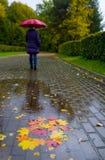 在一个水坑的下落的叶子与一个人和umbr的反射 免版税库存照片