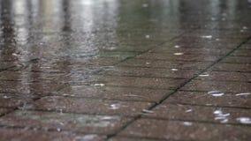 在一个水坑的雨珠在边路 影视素材