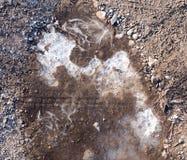 在一个水池的冰在自然 免版税库存图片