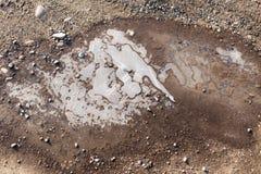 在一个水池的冰在自然 库存照片