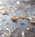 在一个水池的冰在自然 免版税库存照片