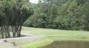 在一个池塘旁边的足迹高尔夫球场的 免版税库存图片