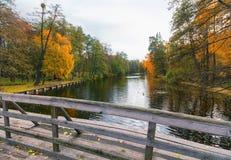 在一个池塘的桥梁在公园 免版税库存图片