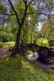 在一个池塘的石桥梁在郊区公园 免版税库存图片