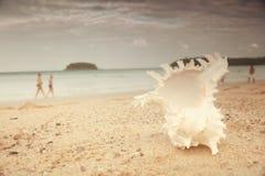 在一个沙滩的巧克力精炼机 免版税库存照片