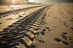 在一个沙滩的平直的引擎轮胎踪影轨道在hendaye 免版税库存照片