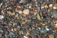 在一个沿海海滩的湿小卵石 库存图片