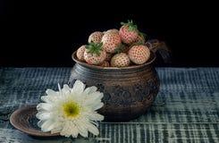在一个泥罐的成熟新鲜的白色草莓在黑背景的一个土气样式 艺术 免版税库存图片