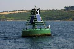 在一个浮体的海鸥在科芙港口 免版税库存照片
