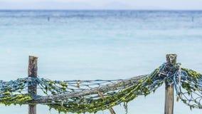 在一个海岛上的天堂热带海滩用清楚的蓝色绿松石水 免版税库存照片