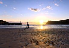 在一个海滩的妇女走的狗在日落期间 图库摄影