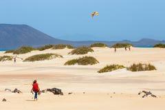 在一个海滩的未知的男性kitesurfer在Corralejo,费埃特文图拉岛,加那利群岛,西班牙 库存照片