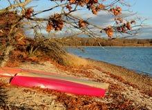 在一个海滩的皮船在秋天 免版税库存照片