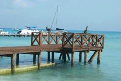 在一个海滩的码头在坎昆,墨西哥 库存图片