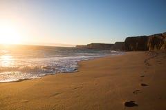 在一个海滩的脚步在日落 免版税库存图片