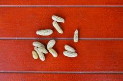 在一个清楚的袋子的坚果在一个红色木地板上 免版税图库摄影