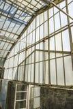 在一个温室里隔绝的爱好者元素 库存照片