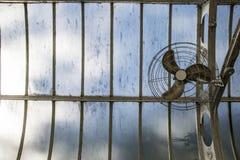 在一个温室里隔绝的爱好者元素 免版税库存照片