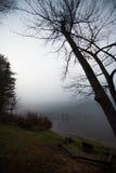 在一个湖的清早雾在渥太华,安大略附近 免版税库存图片