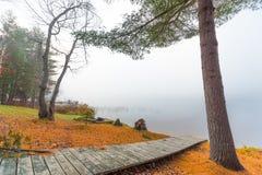 在一个湖的清早雾在渥太华,安大略附近 免版税图库摄影