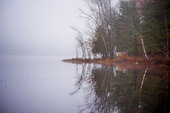 在一个湖的清早雾在渥太华,安大略附近 库存照片