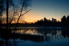 在一个湖的美好的日出与一个上升的薄雾美好的早晨在沼泽地在拉脱维亚 免版税库存照片