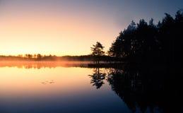 在一个湖的美好的日出与一个上升的薄雾美好的早晨在沼泽地在拉脱维亚 免版税库存图片