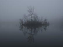 在一个湖的薄雾在黎明 库存图片
