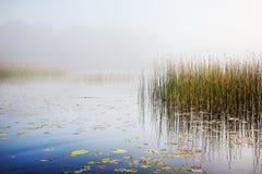 在一个湖的薄雾在黎明 免版税库存照片